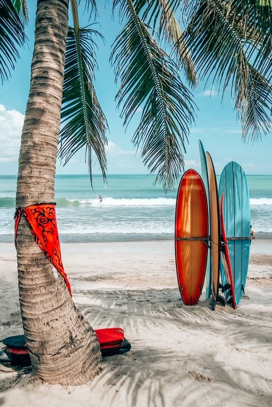 Surfboards under a palm tree on Kuta Beach Bali Indonesia : 2 days in Bali itinerary